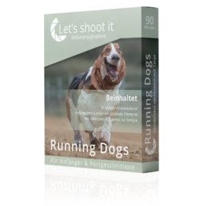 Tierfotografin Tanja zeig im Webinar Running Dogs die digitale Bearbeitung von Hundefotos